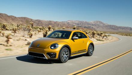 Beetle Dune (1)