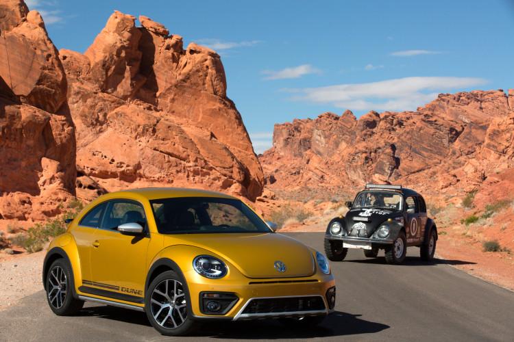 Beetle Dune (5)