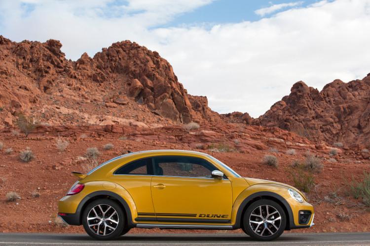 Beetle Dune (7)