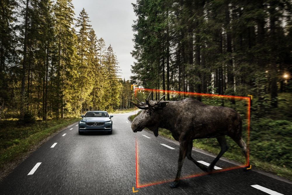 Volvo S90 Exterior Large Animal Detection