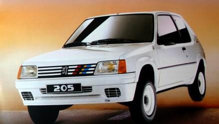 peugeot-205-rallye-3