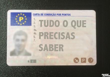 carta de condução por pontos-4