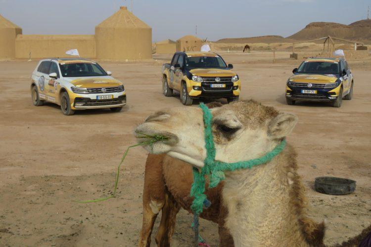 Volkswagen Tiguan 2.0 TDI 240 cv - Offroad Marrocos