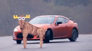 Toyota GT86 falha teste do alce