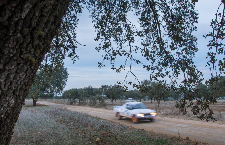 Peugeot 504 Fronteira