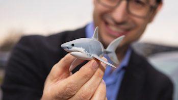 Opel tubarão