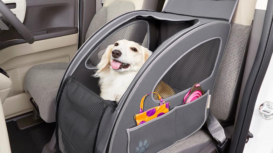 Cadeirinha para cães Honda