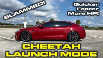 Tesla Model S Performance Cheetah Stance