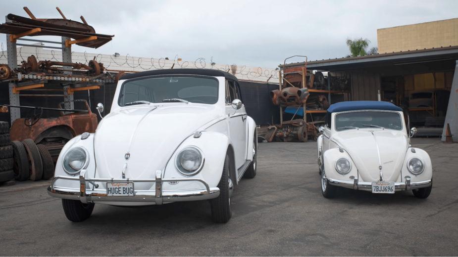 Volkswagen Huge Bug